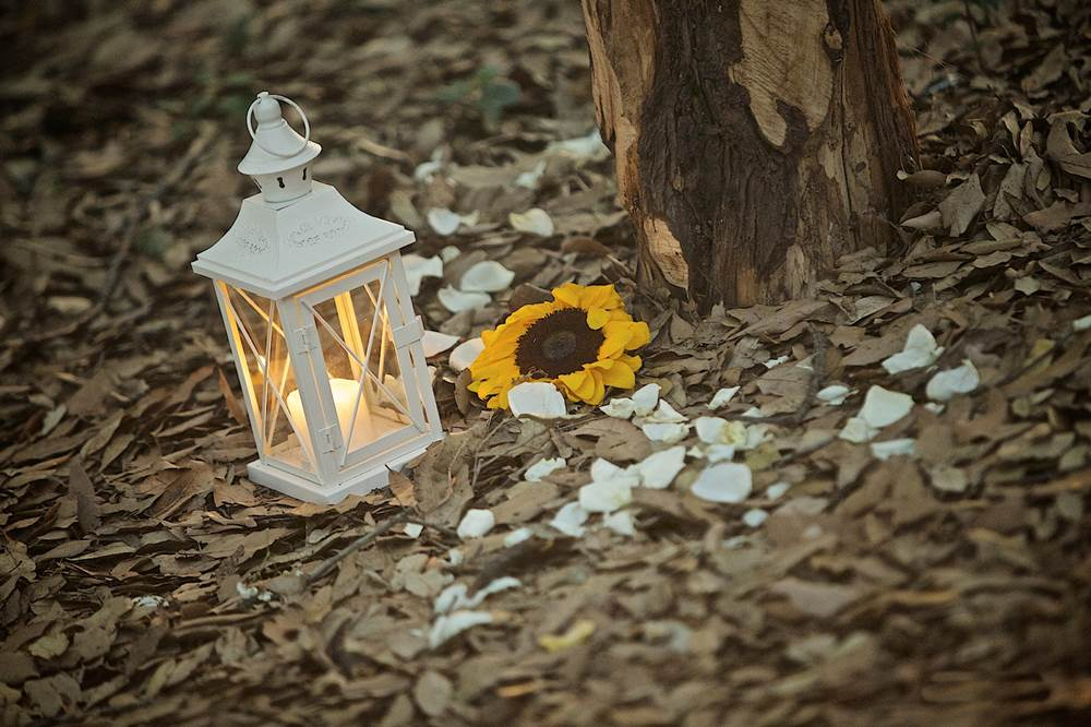Dettagli allestimento matrimonio nel bosco - wedding decor